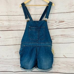 Anthropologie Holding Horses shorts overalls